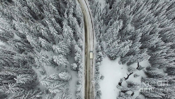 Curve Wall Art - Photograph - Aerial View Of A Snowy Forest With High by Omphoto