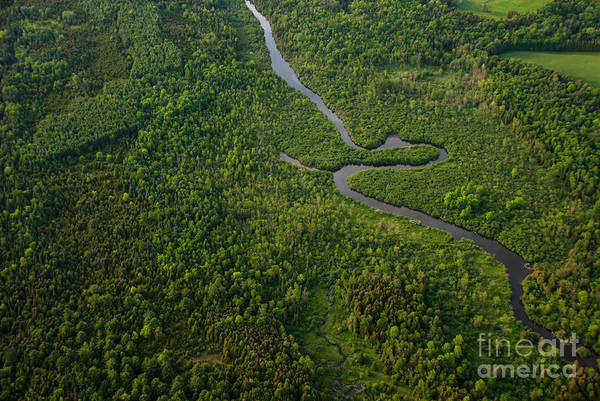 Wall Art - Photograph - Aerial View Of A Winding River by Graham Taylor Photography