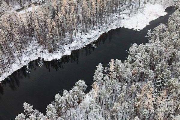 Wall Art - Photograph - Aerial View Of Forest River In Cold by Vladimir Melnikov