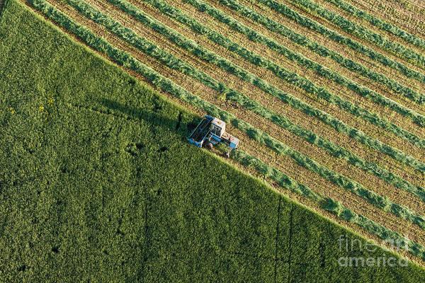 Wall Art - Photograph - Aerial View Of Harvest Fields With by Mariusz Szczygiel