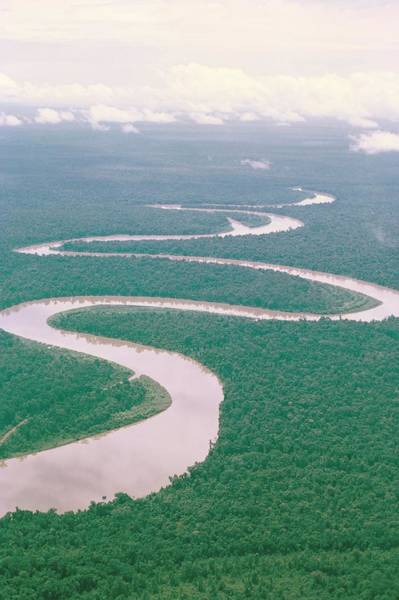Wall Art - Photograph - Aerial View Of River And Forest, West by Claire Leimbach / Robertharding