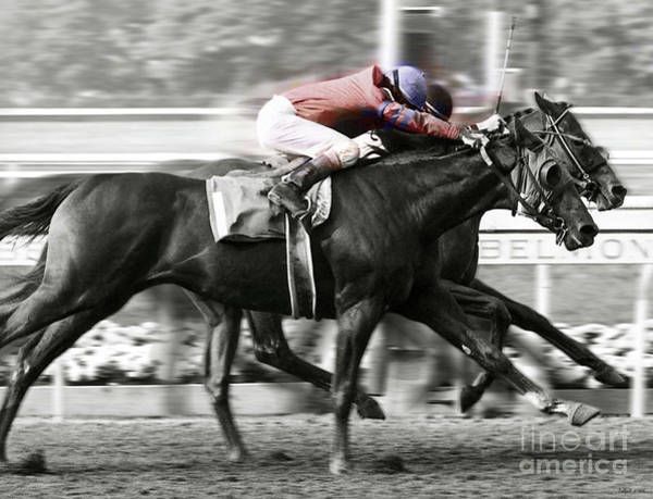 Babe Mixed Media - Affirmed And Alydar, A Horse Race, Belmont Park, New York by Thomas Pollart