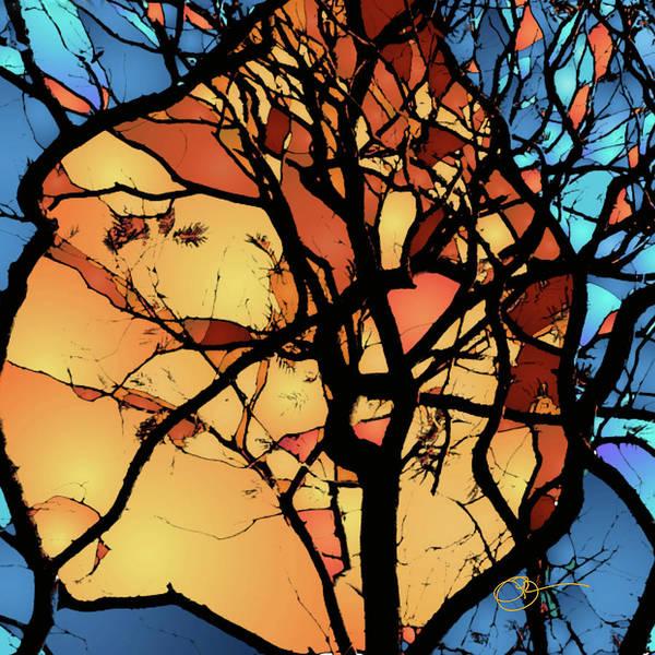 Digital Art - Aflame by Lucas Boyd