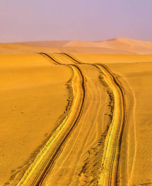 Wall Art - Photograph - Africa, Namibia, Tire Tracks by Hollice Looney