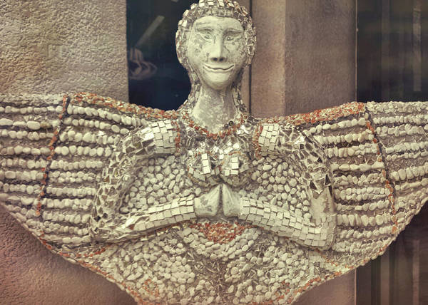 Photograph - African Angel by JAMART Photography