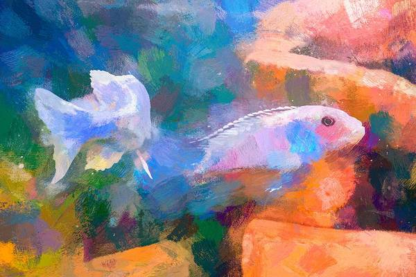 Digital Art - African Cichlid Abstract Art by Don Northup