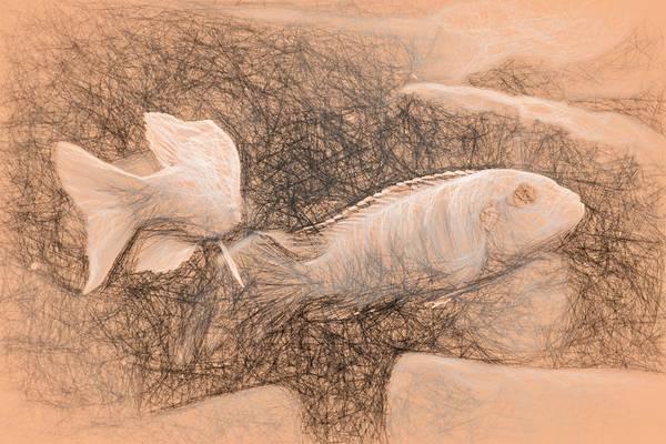 Digital Art - African Cichlid Art Da Vinci by Don Northup