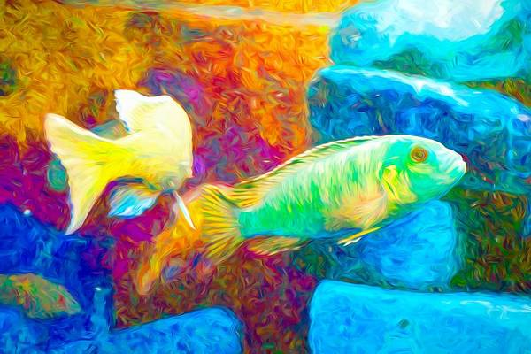 Digital Art - African Cichlid Art Neon by Don Northup