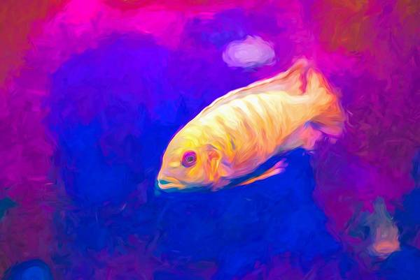 Digital Art - African Cichlid Blue Zebra Neon by Don Northup
