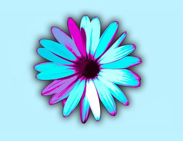Digital Art - African Daisy Blue Purple And White by Scott Lyons