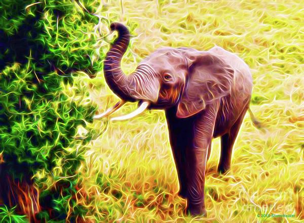 Wall Art - Photograph - African Elephant by Jerome Stumphauzer