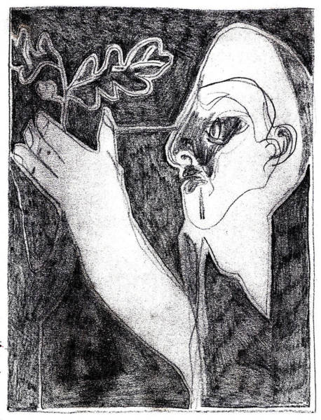 Drawing - After Childish Edgeworth Pencil Drawing 6 by Artist Dot