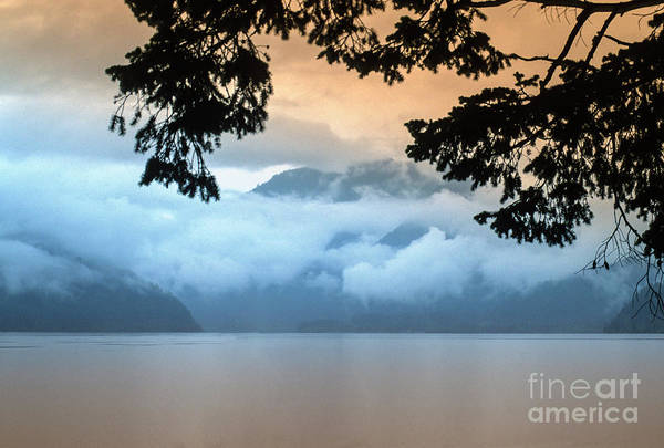 Wall Art - Photograph - After The Storm by Sandra Bronstein