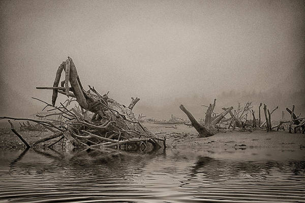 Photograph - After Winter by WB Johnston