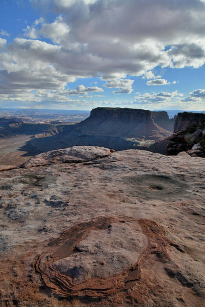 Photograph - Afternoon At Grand View Point by Ray Mathis