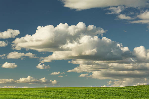 Wall Art - Photograph - Afternoon Clouds Above Rolling Hills by Adam Jones