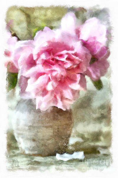 Wall Art - Painting - Afternoon Light Watercolor Pink Cabbage Roses Still Life Floral Art  by Tina Lavoie