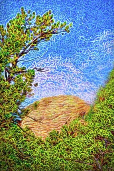 Digital Art - Afternoon Pine Visions by Joel Bruce Wallach