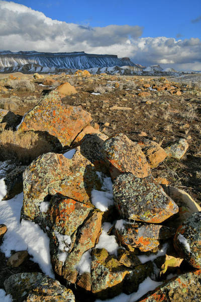 Photograph - Afternoon Sunlight On Boulder Field In Book Cliffs by Ray Mathis