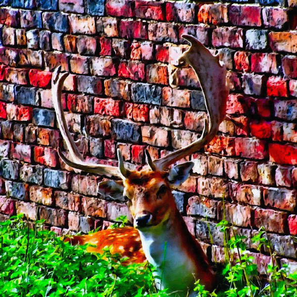 Mixed Media - Against The Wall by Abbie Shores