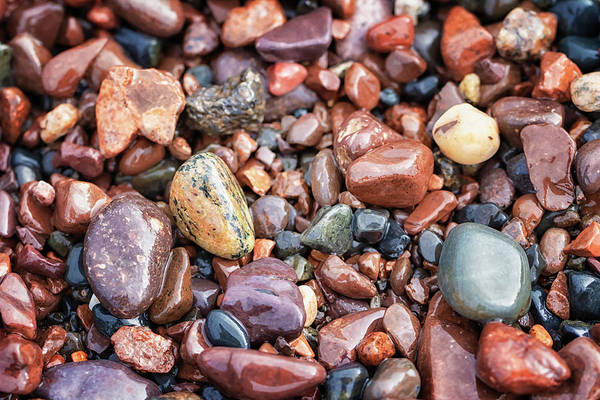 Photograph - Agate Hunting by Susan Rissi Tregoning