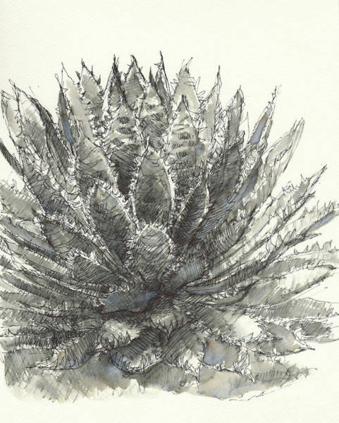 Painting - Agave Queen by Judith Kunzle