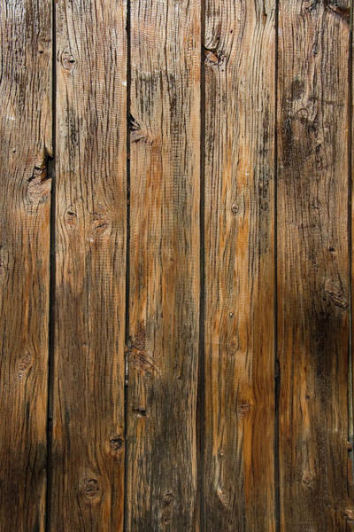 Sliver Photograph - Aged Wooden Background With Vertical by Hanis
