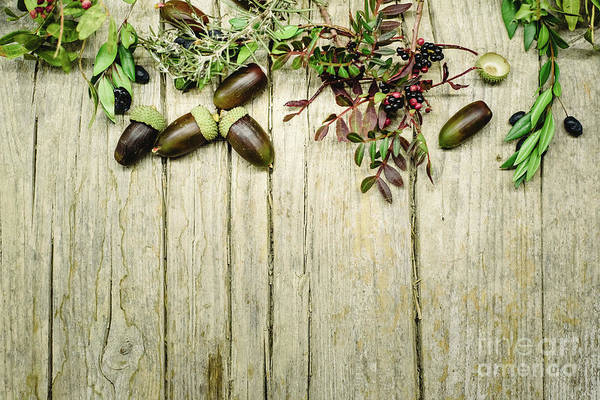 Photograph - Aged Wooden Table Background Decorated With Acorns, Red Berries And Dried Leaves. by Joaquin Corbalan