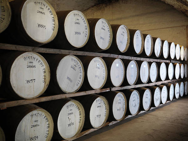 Compartments Photograph - Ageing Whisky Barrels In Distillery by Monty Rakusen