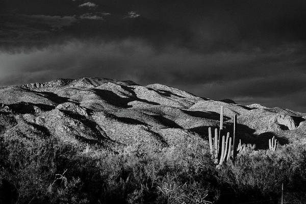Photograph - Agua Caliente Hill Black And White by Chance Kafka