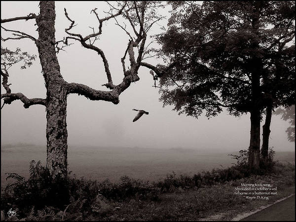 Photograph - Airborne In A Butternut Mist Poem by Wayne King