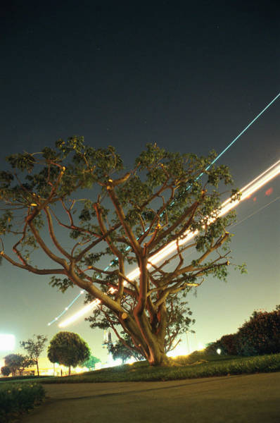 Arrival Photograph - Airplane Coming In For Landing At Night by Paul Taylor