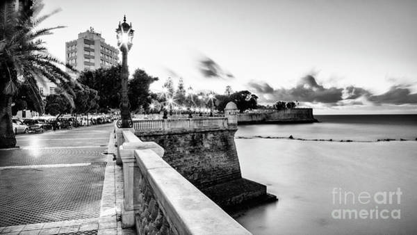 Photograph - Alameda Apodaca Promenade Cadiz Spain Black And White by Pablo Avanzini