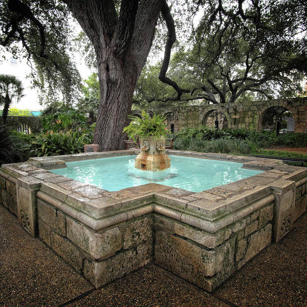Photograph - Alamo Fountain by George Taylor