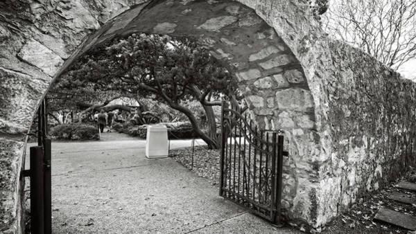 Photograph - Alamo Garden Gate by George Taylor