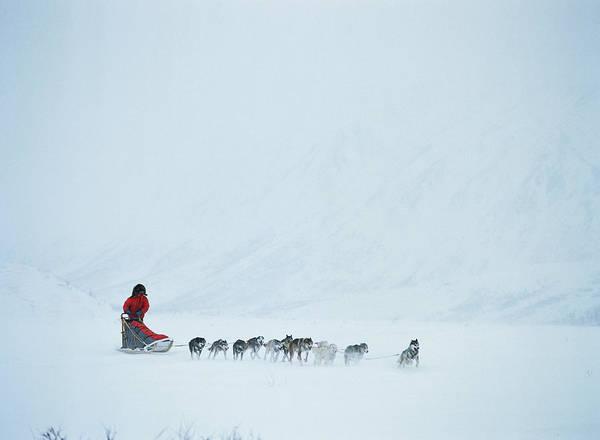 Alaska Photograph - Alaska, Alaska Range, Person On by Kim Heacox