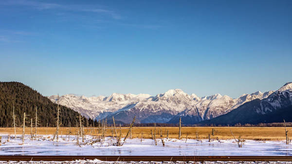 Photograph - Alaska Winter Scene by Framing Places