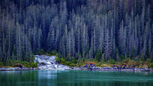 Wall Art - Photograph - Alaskan Coastline Beauty by Carol Fox Henrichs