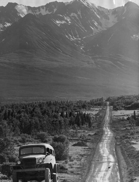 Mountain Lion Photograph - Alaskan Highway by Three Lions