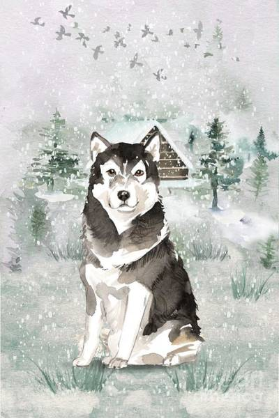 Pedigree Painting - Alaskan Malamute by John Edwards