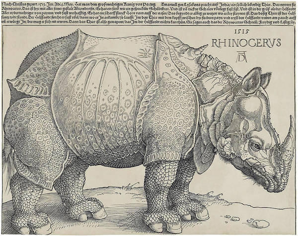 Wall Art - Photograph - Albrecht Durer's Rhinocerus  1515 by Daniel Hagerman
