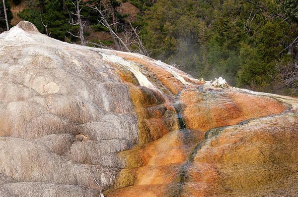 Photograph - Algae On Orange Mound Spring by Steve Stuller