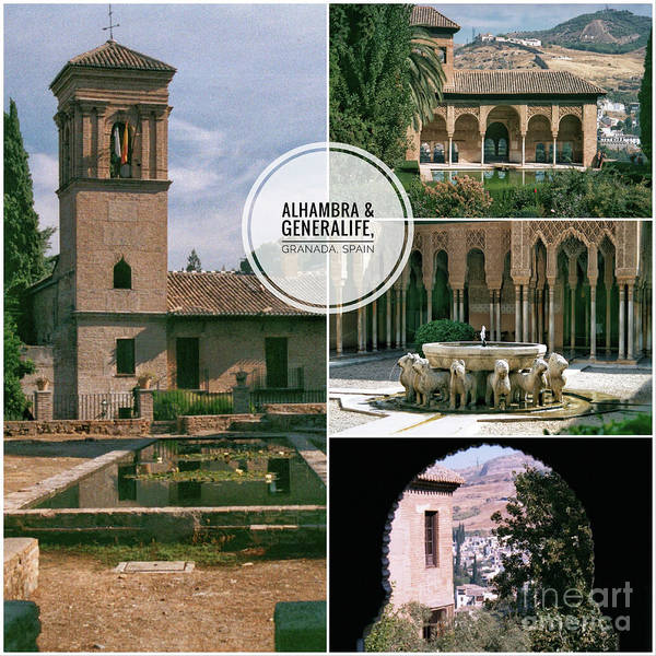 Granada Wall Art - Photograph - Alhambra And Generalife by John Edwards