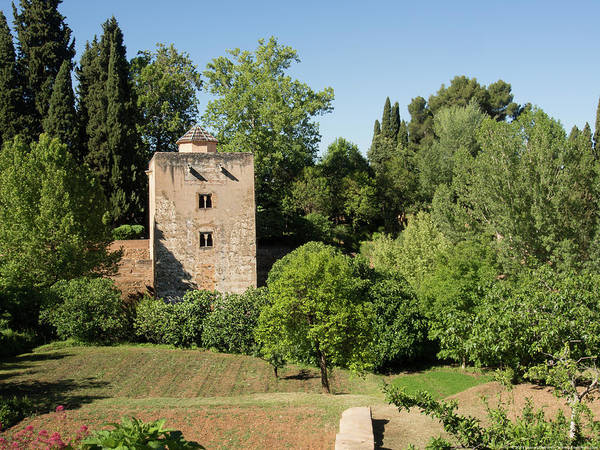 Photograph - Alhambra Tower by Juan Contreras