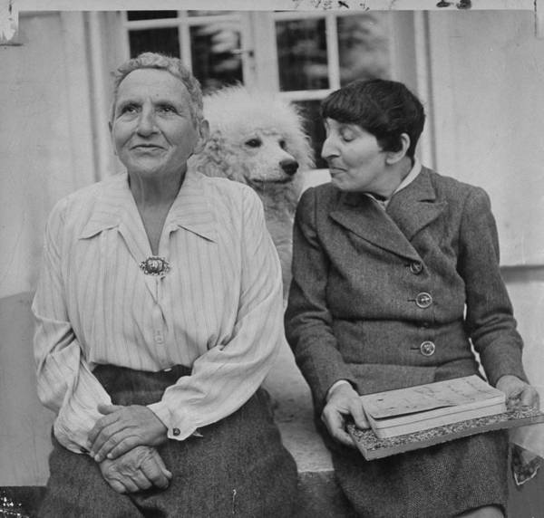 Poodle Photograph - Alice B. Toklasgertrude Stein by Carl Mydans