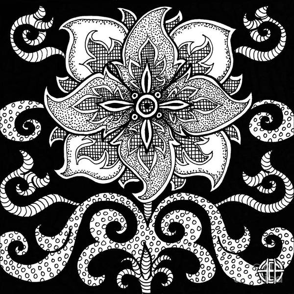 Drawing - Alien Bloom 11 Black And White by Amy E Fraser