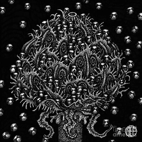 Drawing - Alien Bloom 15 Black And White by Amy E Fraser