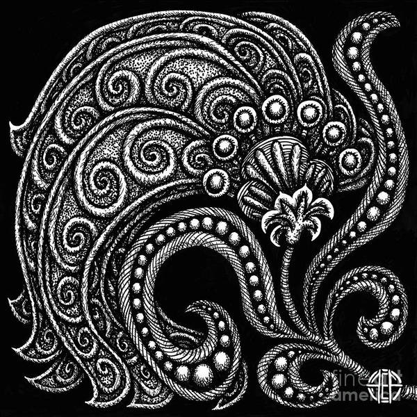 Drawing - Alien Bloom 16 Black And White by Amy E Fraser