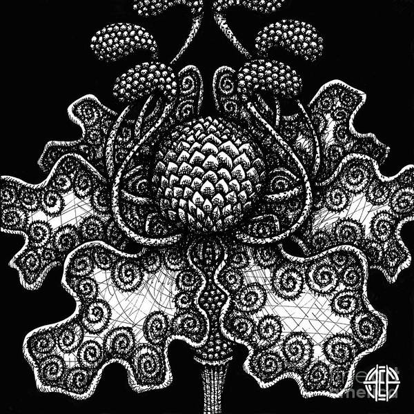 Drawing - Alien Bloom 18 Black And White by Amy E Fraser