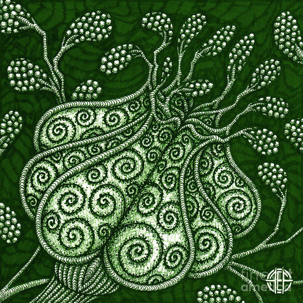 Drawing - Alien Bloom 25 by Amy E Fraser